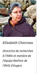 Elisabeth Chevreau
