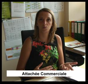 Image Attachée Commerciale