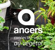 «Angers & le végétal», un nouvel outil pour appréhender l'identité végétale angevine
